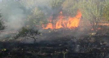 Erzincan'da Yangınlar Bitmiyor