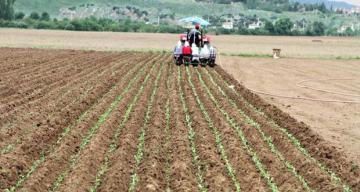 Tarım- ÜFE Temmuz ayında %1,06 azaldı