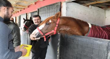 Erzincan Valisi Ali Arslantaş Safari Atlı Spor ve Binicilik Kulübü'nü Ziyaret Etti